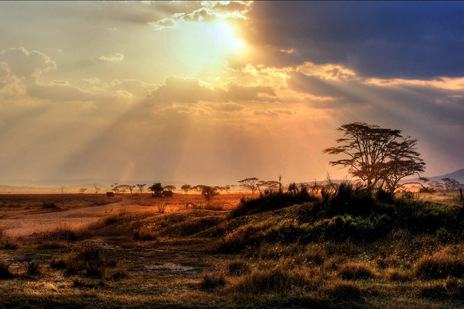 5-Day Safari Tour in Kenya from Nairoibi with Accommodation