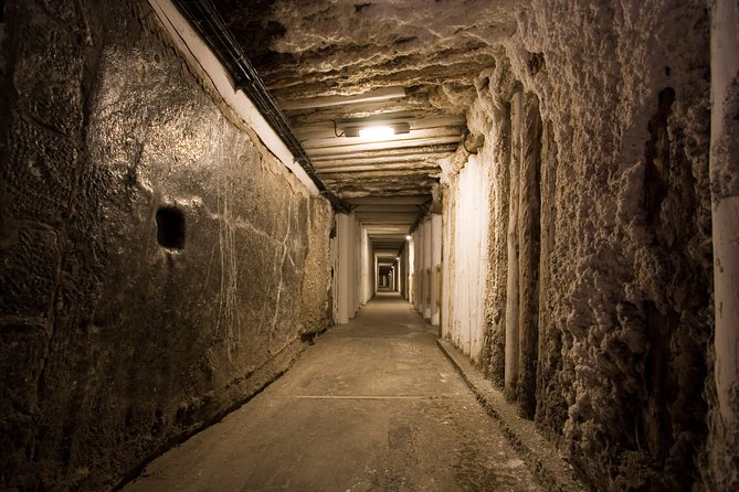 SKIP THE LINE: Private Wieliczka Salt Mine guided tour from Kraków