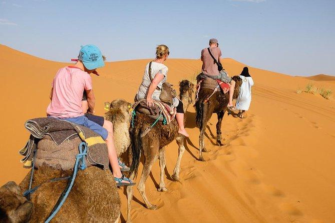 From Marrakech: Moroccan desert 05 days