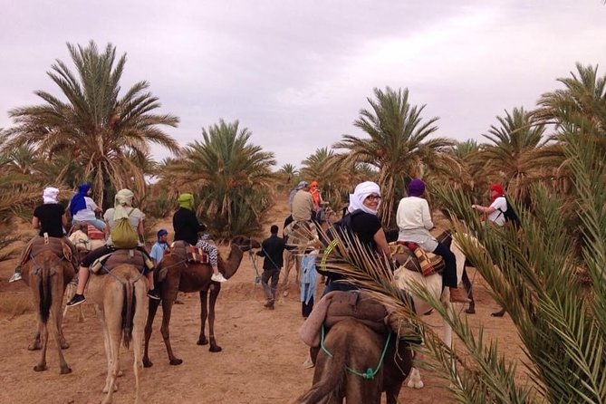 2 Days Tour: A Taste Of Moroccan Desert