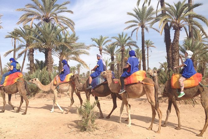 Private Palm Grove Camel Ride With A Tea Break.