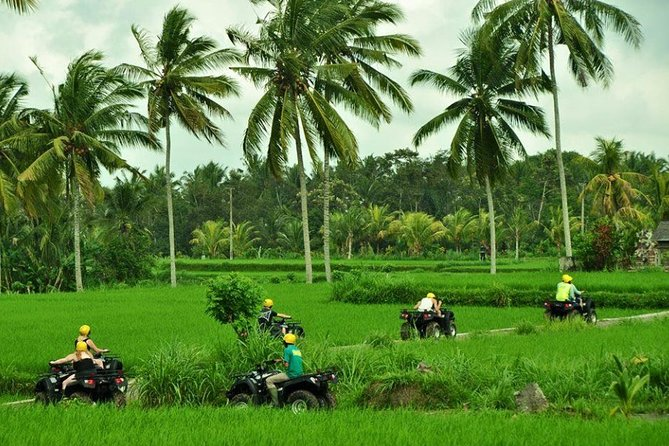 Bali ATV Half-Day Private Tour from Ubud with Lunch