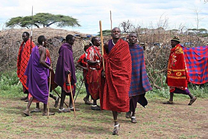 2 Days Private Tour to Ngorongoro and Tarangire National Park