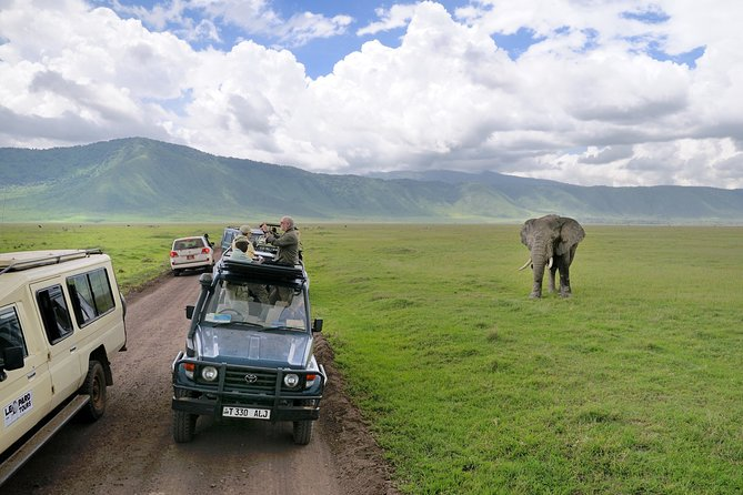 2-Day Lodge Safari with Hotel Pickup in Arusha