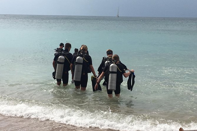 Small Group 2.5 Day 18m Diving Lessons