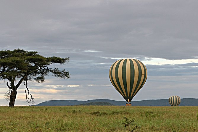 3 Days Private Serengeti and Ngorongoro Safari