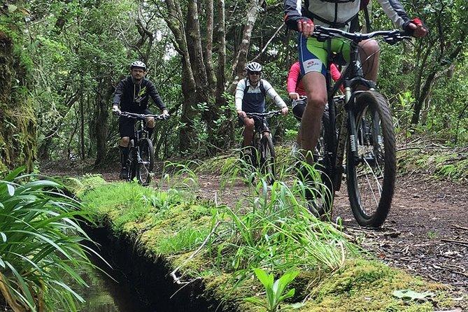 Mountain Biking Tour - Trail Experience Tour