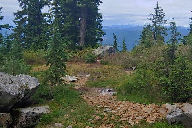 Nature Tour/Hike