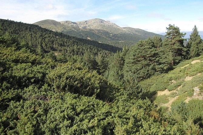National Park of Guadarrama and Manzanares castle: Daytrip from Madrid