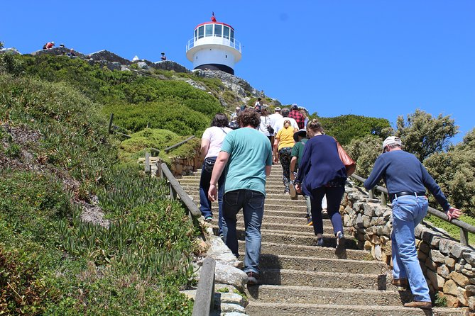 Full-Day Tour to Cape Point and Cape of Good Hope