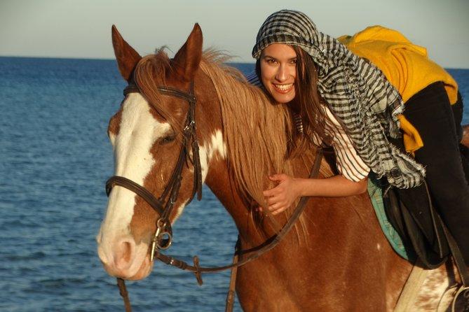 One hour riding horses - Sharm El Sheikh