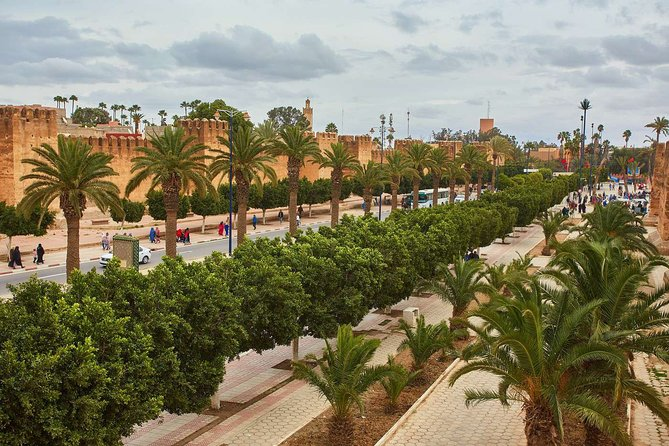 Excursion from the port to Taroudant