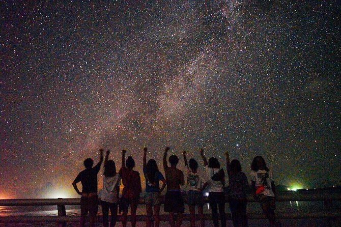 [Okinawa Miyako] Natural planetarium! Starry sky & subtropical jungle Night tour