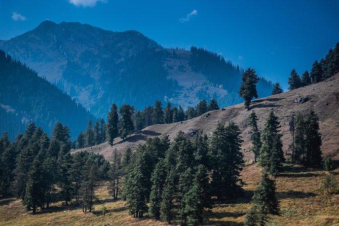Srinagar to Pahalgam Full Day Excursion