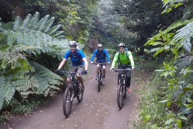 Mountain Biking Tour - Portela