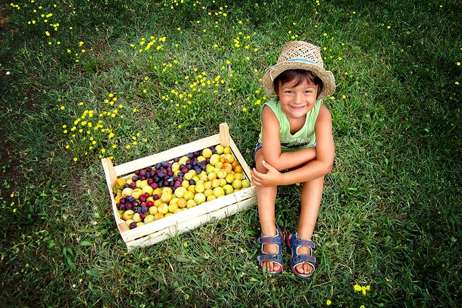 Teaching Bio Farming - Food & Fun for Families in Chianti