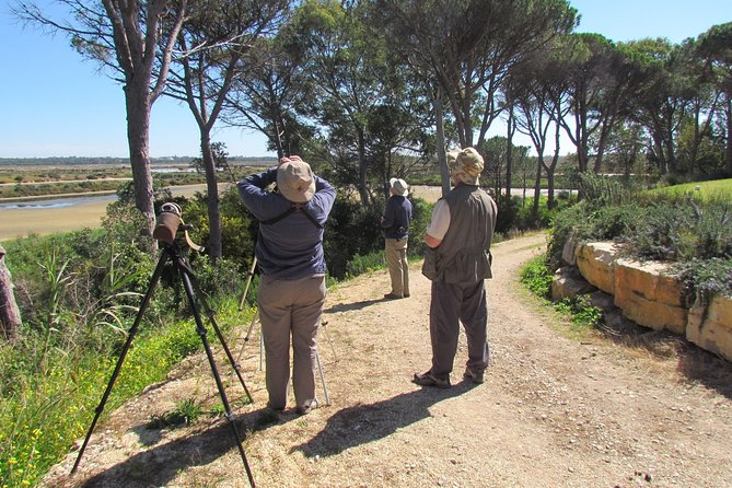 Bird watching day in the Ria Formosa Natural Park