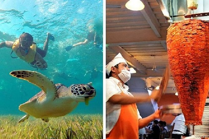 Sea Turtles, Reef, Shipwreck Snorkeling & Cancun Taco Tour Combo