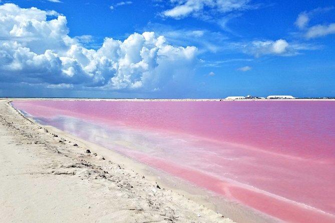 Gorgeous Natural Pink Lake, Las Coloradas Tour!
