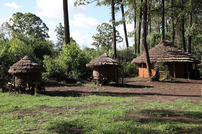 3-Day Safari to Masai Mara National Park from Nairobi
