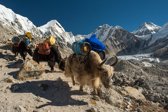 16-Day Everest Base Camp Trek from Kathmandu