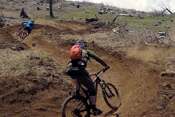 Mountain Biking Tour- Enduro Arieiro