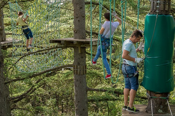 3h Tree climbing + Nature park day (animals, nets, barefoot trail ...)