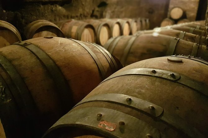 Wine and archeology in Basilicata