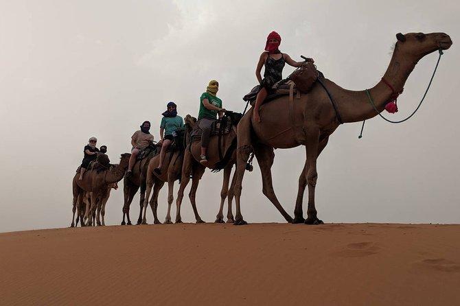 2 days / 1 night desert trip Fes to Fes