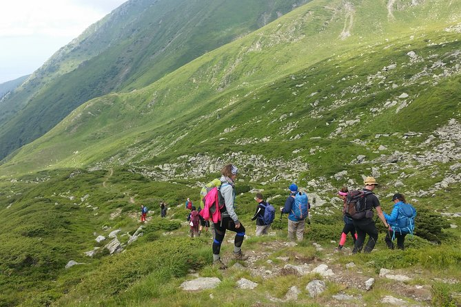 PRIVATE, EASY Day Hike in Carpathian Mountains
