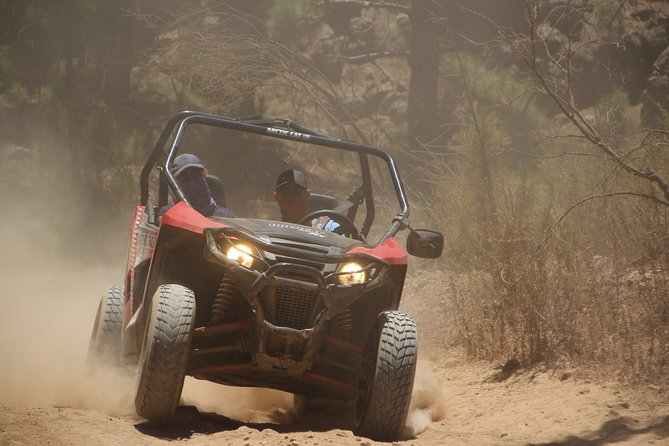 Buggy Safari (Off Road)
