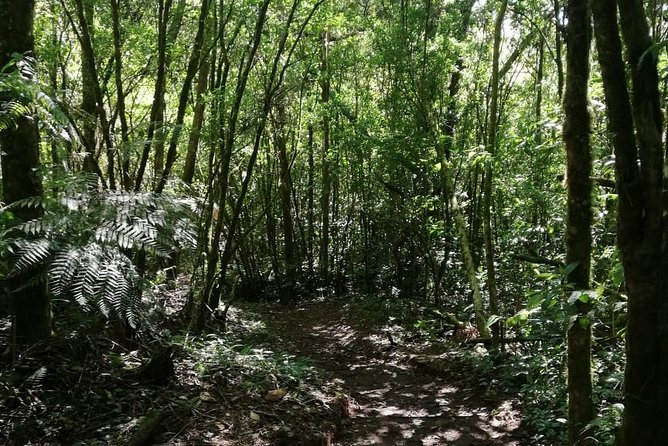 Sacred Mountain Nature Reserve