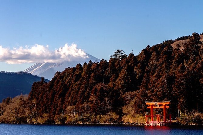 Private Hakone Tour - View of Mt. Fuji, Nature and Culture
