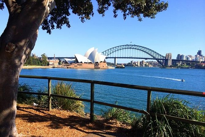 Half-Day Walking Tour in Sydney
