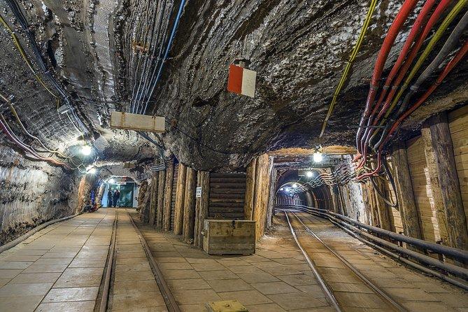 Half-Day Bochnia Salt Mine Private Guided Tour from Krakow