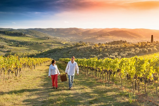 Private Wine Tasting Walking Experience in Tuscany