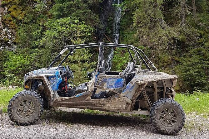 Private Buggy Experience All Seasons in Pamporovo