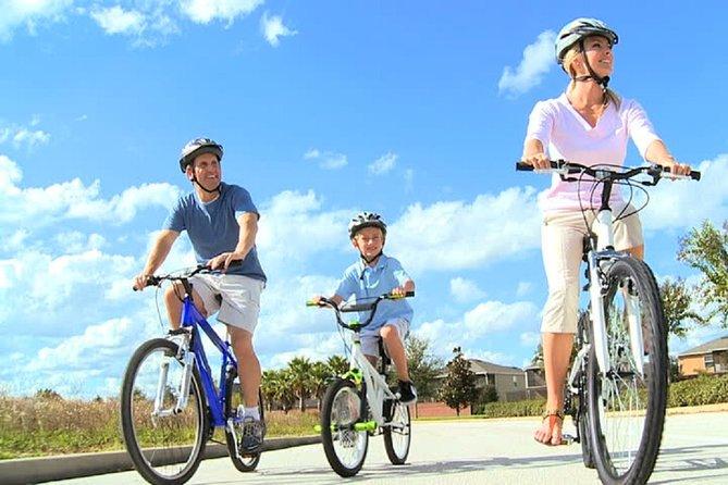 City Bike or E-Bike Tour and Camel Safari on the Maspalomas Dunes 4 Hour