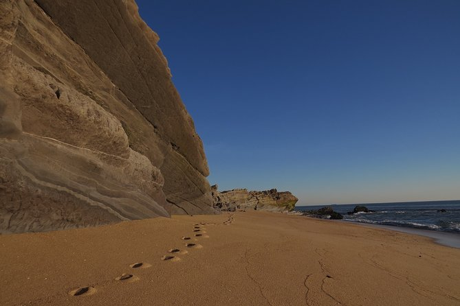 Cabo Mondego: discover this open-air museum from the Jurassic period.