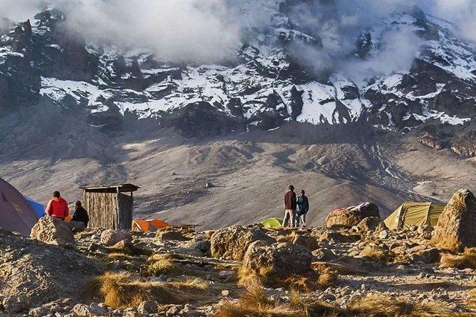 8 Days Lemosho Route 8 Mount Kilimanjaro Climbing/hiking & trekking