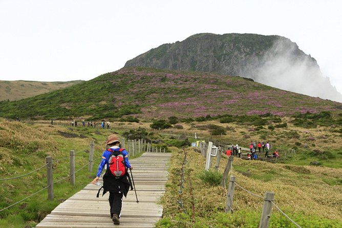Full Day Jeju Island Private Tour for East course with Korean Black pork BBQ