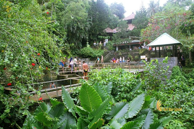 Full-Day Bali Car Charter to Exploring Tour in North Bali