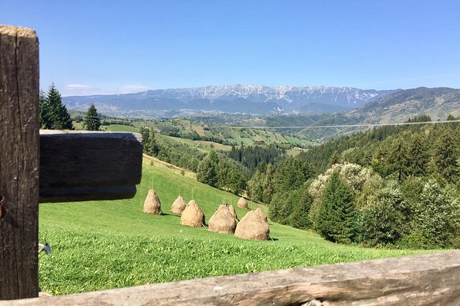 PRIVATE Day Hike on rollings hills near Bran Castle, through mountain villages