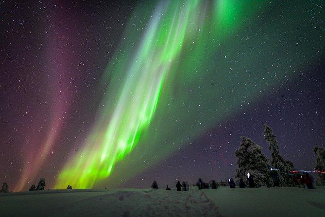 Private Aurora Tour (1-4) by Aurora Experts- Rovaniemi