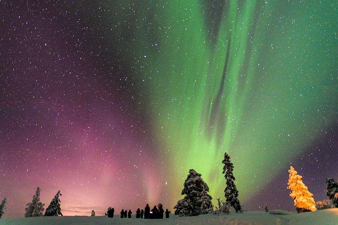 Private Aurora Tour by Aurora Experts- Ivalo-Saariselka