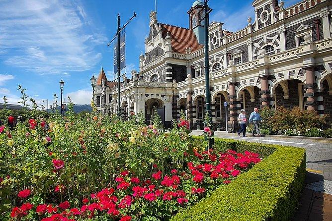 Iconic Dunedin City Highlights Tour