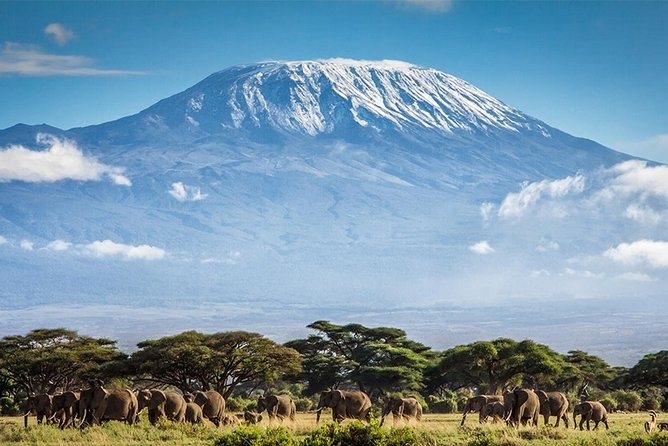 Climb Mount Kilimanjaro: 7 Days Machame Route