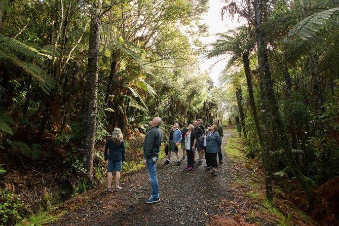 West Coast Wilderness Experience
