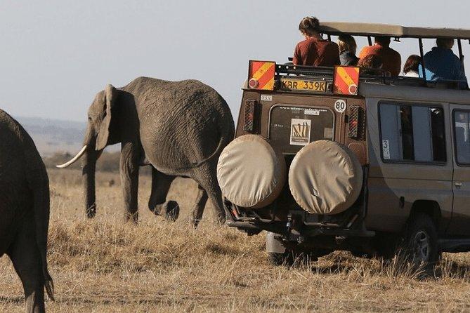 5-Day Amboseli, Tsavo West & Tsavo East Safari