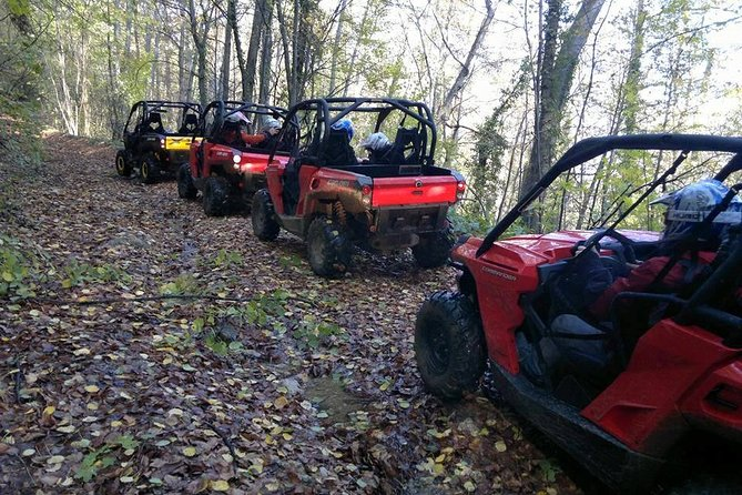 2 Hour Private Superb Buggy Adventure